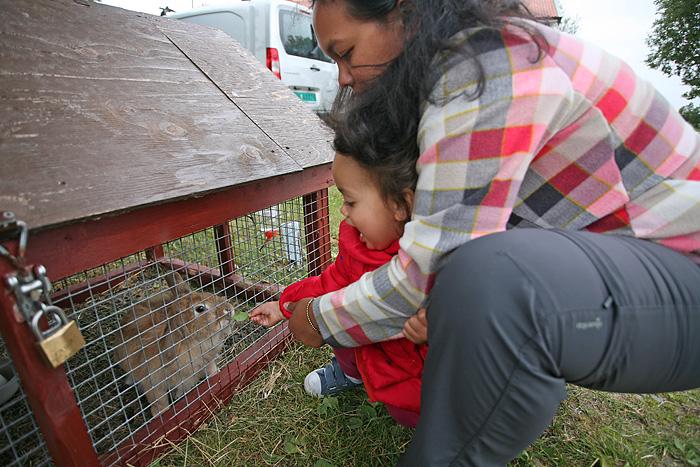 Eden donne à manger au lapin (enfin, elle flippe un peu)