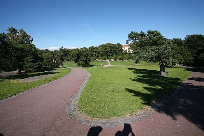 Ce parc est super sympa. De grandes étendues de gazon, et même une zone fermée pour que les chiens puissent se faire des amis chiens !