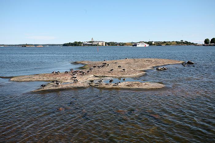 l'île des canards. Au fond, le catamaran qui relie Helsinki à Tallinn en Estonie