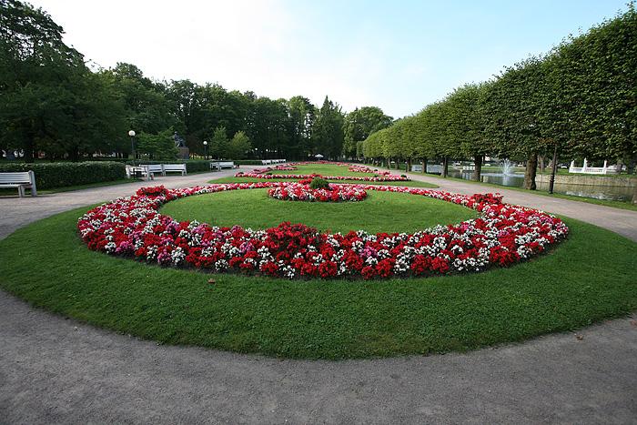 et plein de fleurs