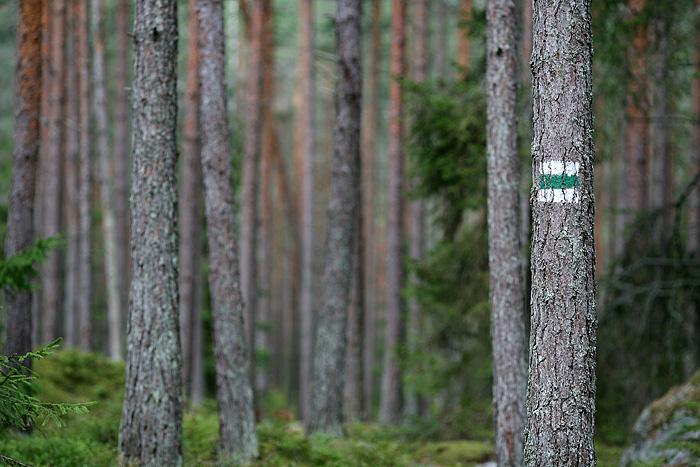 Toujours cet excellent balisage. D'ailleurs, il y'a des panneaux d'information aux endroits stratégiques. et toujours avec une traduction en anglais (prenez en de la graine, les Finlandais :)