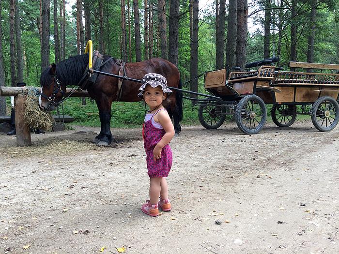 Eden découvre qu'un cheval c'est grand