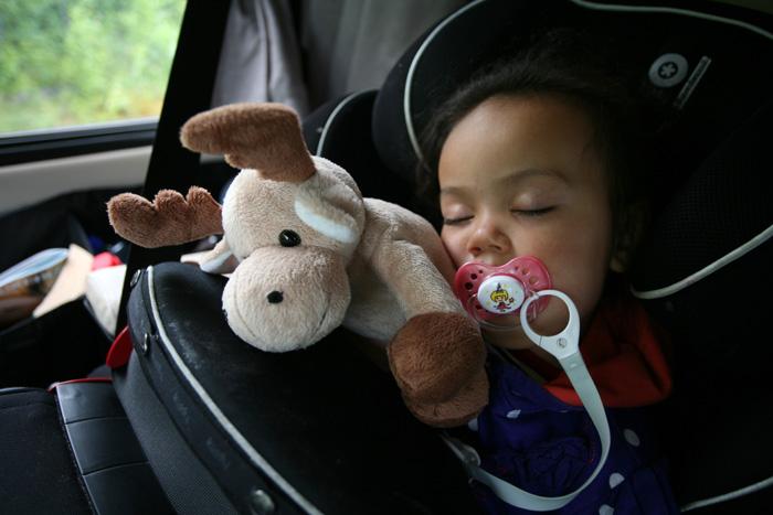 """Pendant ce temps, Eden dort avec son nouveau doudou """"Moose"""""""